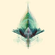 THE FEATHERED TRIBE - COMPLEXITY GRAPHICS