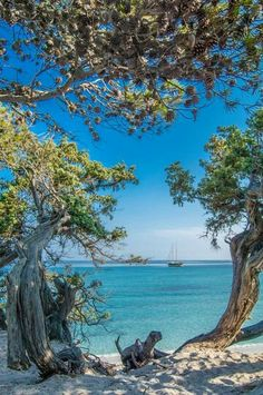 Corse, prés de Bastia https://www.hotelscombined.com/?a_aid=150886