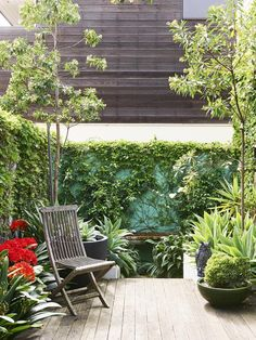 City courtyard garden relaxed feel in a small space