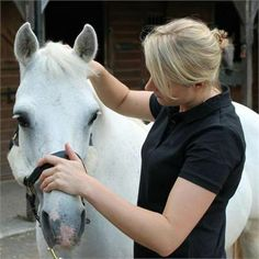 Cambridge Human, Equine and Canine Osteopath - Specialist Equine and Human Osteopath http://www.equineclassifieds.co.uk/Horse/specialist-equine-and-human-osteopath-listing-588.aspx#.Uy2c-c4TCZY