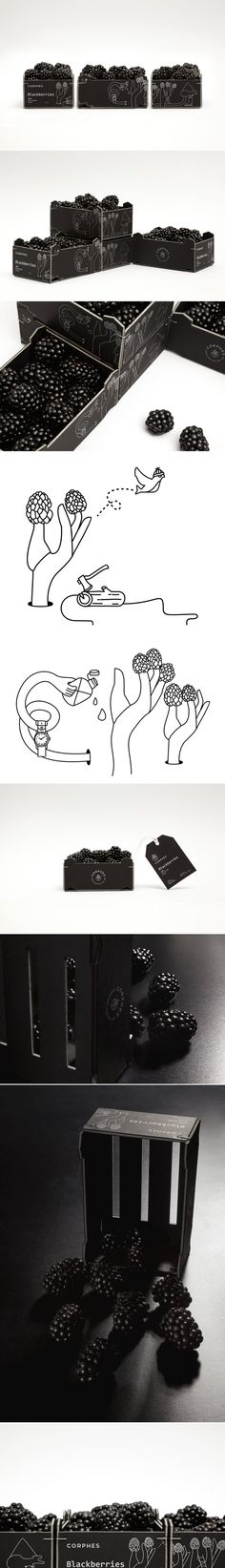 These Blackberries Come With Wonderfully Funky Illustrations — The Dieline | Packaging & Branding Design & Innovation News