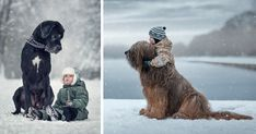 """""""Little Kids and Their Big Dogs"""" is a heartwarming photography project by Andy Seliverstoff that focuses on the unbreakable bond between little children and their supersized dogs. Cute Little Puppies, Puppies And Kitties, Cute Puppies, Cute Dogs, Doggies, Fluffy Animals, Cute Animals, Dog Quotes Love, Dog Rules"""