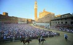 Siena Palio Race!today the most spectaculare horse race in the world!