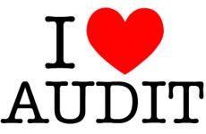Compensation Watch: Internal Auditors | Specialization