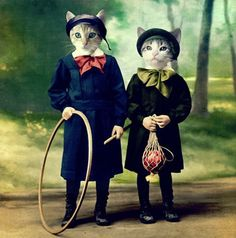 Fashionable Feline - These fashionable felines are definitely the cat's meow. More than just pet costumes, these cats have impeccable style, from kitty couture books . Crazy Cat Lady, Crazy Cats, Funny Animals, Cute Animals, Cat Couple, Gatos Cats, Photo Chat, Animal Heads, Vintage Cat