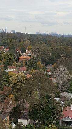 Sydney city on the background. Hot seat