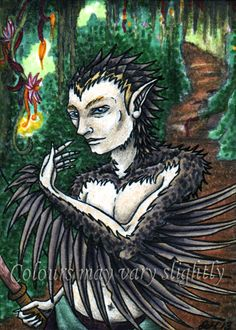 """""""Fachin's Mane,"""" pencil, marker & ink ACEO by Sharlene McNeill"""
