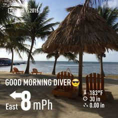 Good morning to all the divers.