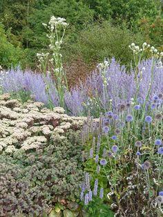 Garten bad driburg garden outdoor pinterest b der for Piet oudolf pflanzen