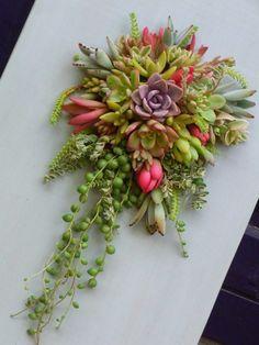 Por cierto, feliz cactus day! ;)