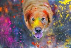 Let's play Holi.....