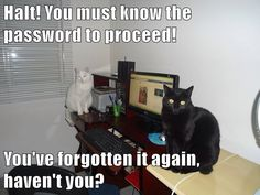 Halt! You must know the password to proceed!  You've forgotten it again, haven't you? http://cheezburger.com/9008122368