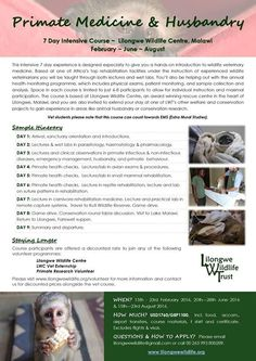 Primate Medicine & Husbandry Course: dates available! Places to fill in FEBRUARY, JUNE & AUGUST, through Lilongwe Wildlife Trust in Malawi. Ideal for vet students/graduates wishing to gain skills in wildlife. Contact lilongwewildlife@gmail.com for more info