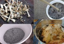 How To Make Bone Meal Fertilizer At Home