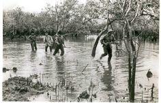 Viet Cong Weapons in Vietnam | Viet Cong D445 Provincial Mobile Battalion