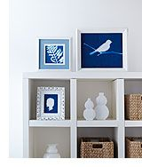 Developed in the warm summer sun, light-sensitized paper or fabric turns a rich blue color, while areas covered with flat objects remain white. Follow our easy step-by-step instructions to create your own