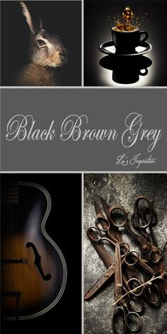 """Hi Ladies.  Tonight let's pin this color  board of """" BLACK BROWN AND GREY """" Thank you and Happy Pinnning ❤"""