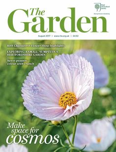 Cosmos Cupcakes on the Cover- a favorite of the bees! Discover a world of horticulture with 'The Garden' magazine / RHS Gardening