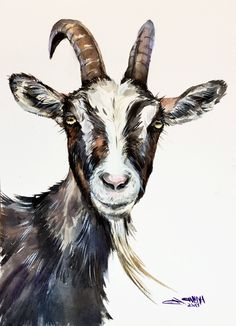 Goat faced portrait, goat art, farm animal portrait, goat decor ORIGINAL WATERCOLOR PAINTING by alisiasilverART on Etsy