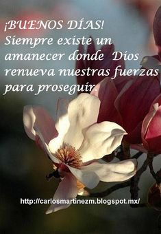 Good Day Quotes: Buenos días con mucha fe y fuerza - Quotes Sayings Morning Love Quotes, Good Day Quotes, Good Morning Messages, Good Morning Greetings, Good Morning Good Night, Quote Of The Day, Biblical Verses, Bible Verses, Christian Verses