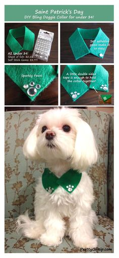 Aww how cute tells you step by step how to make this cute doggie bling collar for St. Patrick's day