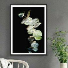 Pink & Black Gum Blossom Print Australian Nature Photography | Etsy Floral Photography, Macro Photography, Native Australians, Black Gums, Botanical Wall Art, Black Decor, Native Plants, Pink Black, Flower Prints