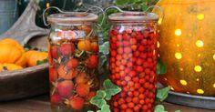Jeg har igen i år fyldt nogle gamle henkogningsglas med bær, rønnebær og hyben. De er bare plukket, hældt på glas og overhældt med hvid Hei...