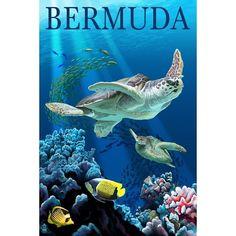 Bermuda - Sea (Blue) Turtles - Lantern Press Artwork (Acrylic Serving Tray)