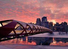 Peace Bridge - Calgary