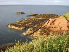 Coastal rock formations at Dunbar.  http://www.belhavenfruitfarm.co.uk/the-store.aspx