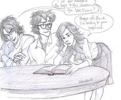 Lily Evans and James Potter... and then Sirius, interrupting as always.