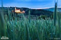 Goricko, Prekmurje, Slovenija; photo: Jost Gantar