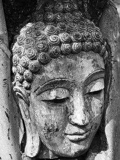 Head of Buddha Wall Mural | Eazywallz
