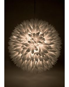 Flower Surge Light.... wouldn't pay 119 for it. but it's still beautiful!
