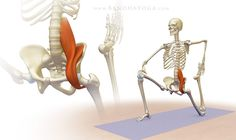 The Psoas Awakening Series synergistically combines the standing poses to awaken…