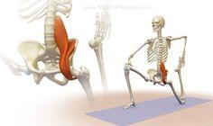 Effective Hip Flexor Stretch: Trikonasana - Preparatory Pose 1