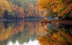 Two Adirondack chairs sit vacant on a dock along the misty shore of the Androscoggin River in Turner, Maine