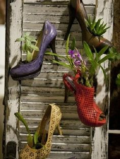 HomelySmart | 20 Unexpected Things To Be Used As Planters Unique Gardens, Amazing Gardens, Plant Containers, Container Plants, Container Gardening, Succulents Garden, Garden Planters, Planting Flowers, Herb Garden