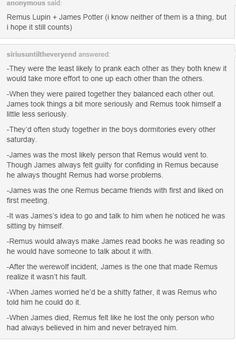 the marauders - james and remus