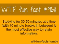Studying for mins at a time (with 10 min breaks in between) is the most effective way to retain information… MORE OF WTF-FUN-FACTS are coming HERE funny laws and weird facts ONLY Wtf Fun Facts, True Facts, Funny Facts, Random Facts, Creepy Facts, Scary, Random Stuff, Anne Frank, The More You Know