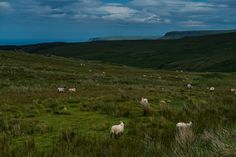 Antrim Coast, Northern Ireland - Travel Past 50