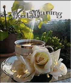 The Effective Pictures We Offer You About good morning GIF A quality picture can tell you many things. You can find the most beautiful pictures that can be presented to you about jungkook GIF in this Good Morning Coffee Gif, Gud Morning Images, Beautiful Morning Quotes, Inspirational Good Morning Messages, Latest Good Morning Images, Cute Good Morning Quotes, Good Morning Thursday, Good Morning Texts, Good Morning Happy