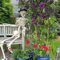 Sometimes you can plan your flower displays and then Nature self-seeds in something of her own which of course works beautifully! ⠀ ⠀ #skeleton #bones #gardenfeature #malva #mallow #buttercups #wildflowers #geraniums #lavender #pretty #flowers #floweroftheday #instaflower #cutflowers #fragrance #scent #perfume #purple #yellow #pink #summer #summertime #summerflowers #garden #gardening #gyo #growyourown #lovemygarden