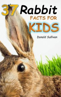 37 Rabbit Facts for Kids: Types of Rabbit Breeds and how to care for your Pet Bunny (Maverick Kids) by Donald Sullivan, http://www.amazon.com/dp/B00DT5ZI6O/ref=cm_sw_r_pi_dp_JO74rb13A2VT5