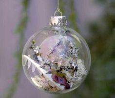 Christmas Ornaments | Christmas Tree Ornaments With Living Plants Sample Craft Christmas ...
