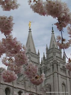 Spring Salt Lake Temple