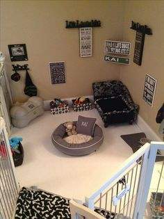 Why is using a dog house a good idea? Most people tend to have the misconception that dog houses are meant for only those dog owners who intend to keep their dogs outside. Animal Room, Diy Pour Chien, Dog Bedroom, Master Bedroom, Puppy Room, Dog Spaces, Small Spaces, Dog Rooms, Dog Play Room