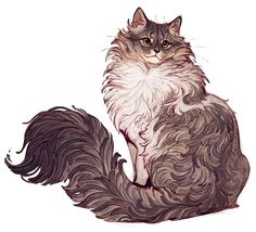 Norwegian Forest Cat Illustration Cats And Kittens Posca Art, Creation Art, Norwegian Forest Cat, Art Et Illustration, Illustrations, Cat Drawing, Drawing Tips, Forest Drawing, Forest Art