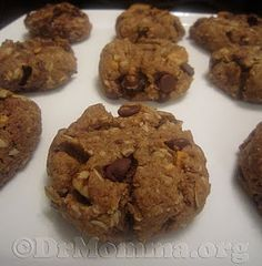 """Major Milk Makin' Lactation Cookies: Helps increase your breast milk supply! But also a """"healthy"""" cookie!"""