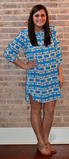 Blue and taupe shift dress with small gold buttons down the front.  Loving the shirt style of this fabulous dress. Spring fashion by Studio 3:19